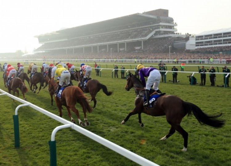 The Cheltenham Gold Cup Festival 2017